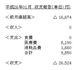 Shushi201401